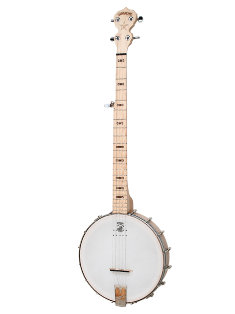 electric banjo