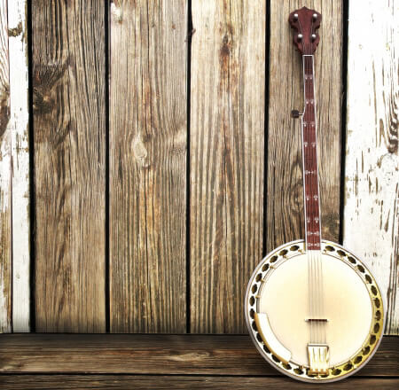 Best electric banjo